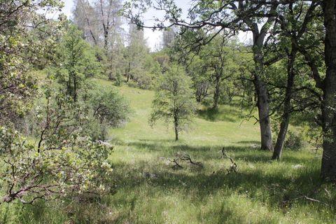 Photo of 148 Acres Donkey Mine Rd, Oak Run, CA 96069