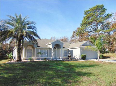 1362 W Hampshire Blvd, Citrus Springs, FL 34434