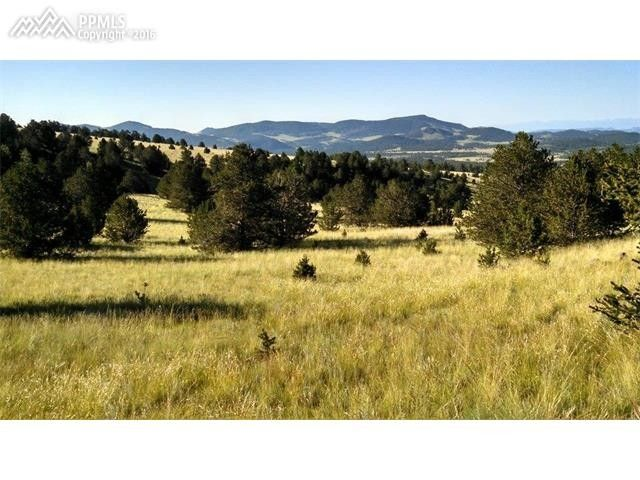 2318 county 59 rd guffey co 80820 land for sale and