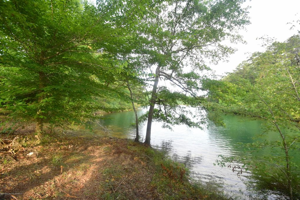 Bankhead Pointe Lot 29, Double Springs, AL 35553