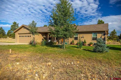 63 Convention Pl, Pagosa Springs, CO 81147