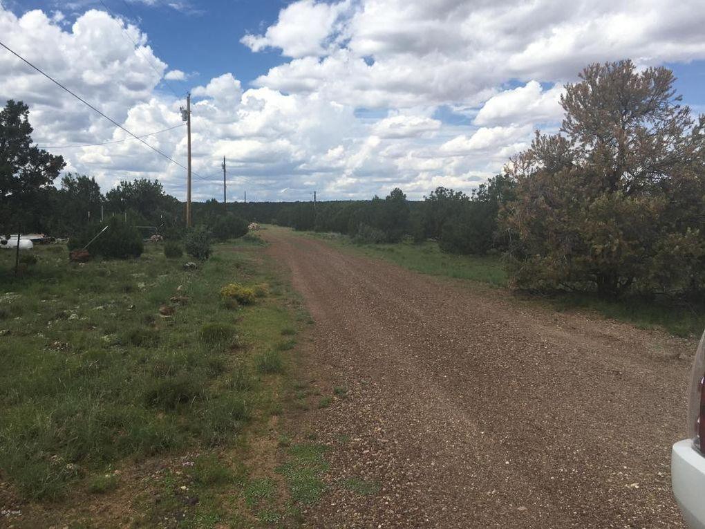 Palomino Concho Valley AZ 85924
