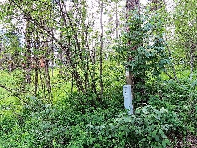 Huckleberry Rd Lot 38, Garden Valley, ID 83622 - Recently Sold Land ...