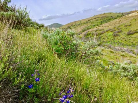 Photo of 5039 W Browns Canyon Rd Lot 75, Peoa, UT 84061