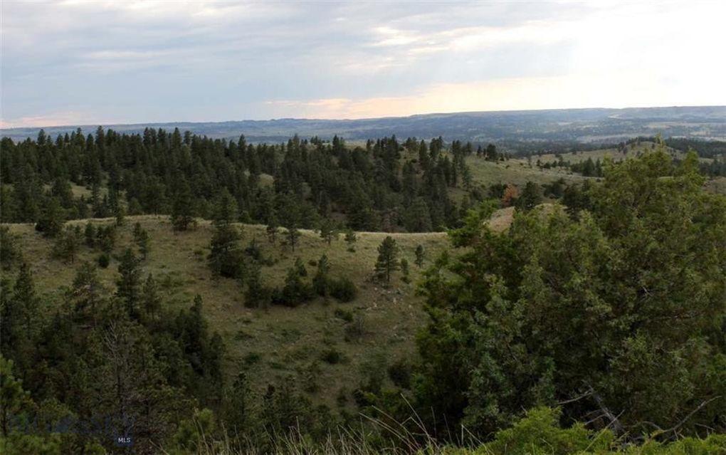 Nhn Rock Canyon Ln Hysham, MT 59076