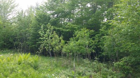 1775 Wildlife Rd Lot 6, Hartford, VT 05084