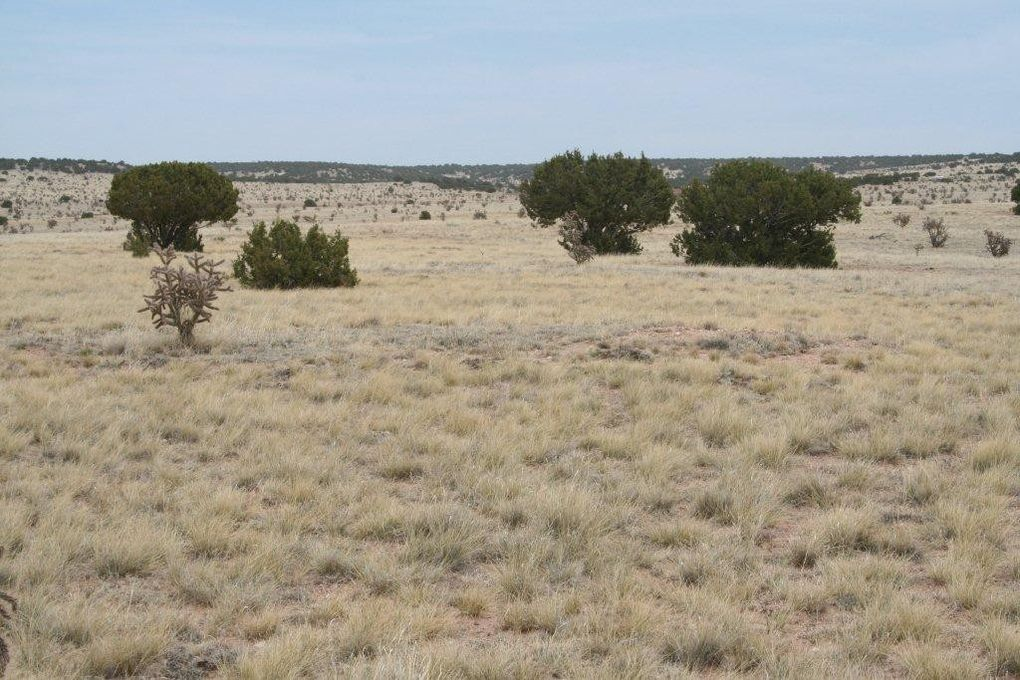 Property Land For Sale In Loving Nm