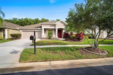 Seven Oaks Wesley Chapel Fl Recently Sold Homes Realtor Com