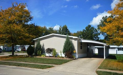 81 Periwinkle Dr Olmsted Township OH 44138