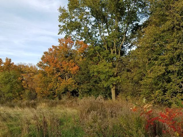 County Rd N Arpin, WI 54410