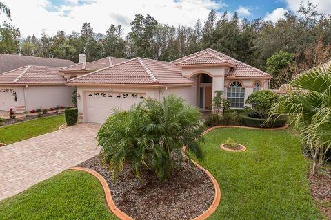 1254 Lindenwood Dr, Tarpon Springs, FL 34688