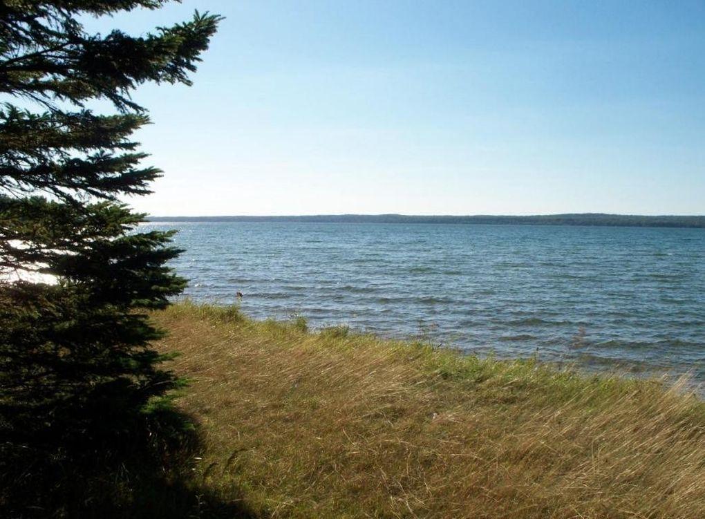 mullett lake hindu singles North end of mullett lake majestic estate for rent, 7 bedroom 7 bath sleeps 28.