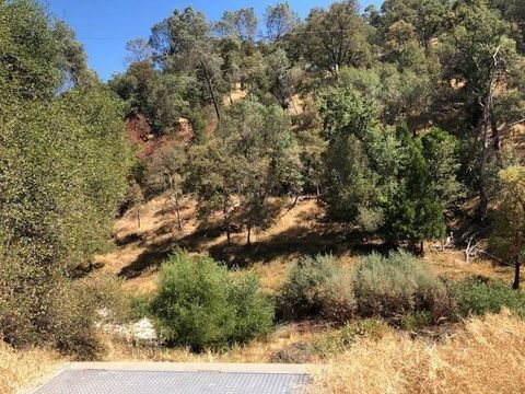 Amador Creek Rd, Amador City, CA 95601