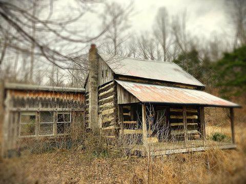 Buffalo, KY Real Estate - Buffalo Homes for Sale - realtor com®