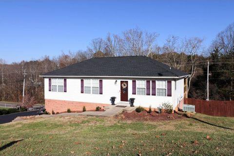 201 Millstone Cv, Bluff City, TN 37618
