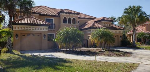 Photo of 20001 Pergola Bend Ln, Tampa, FL 33647