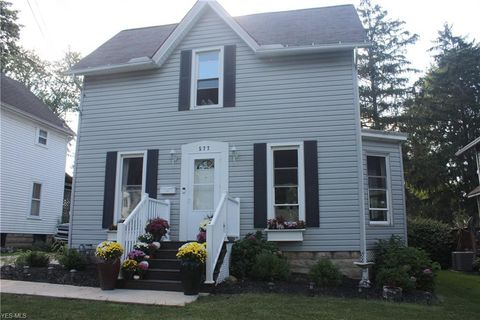 Brilliant 577 S Broadway St Medina Oh 44256 Home Interior And Landscaping Ologienasavecom