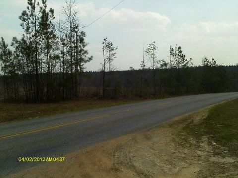 Highway 47 North, Pine Apple, AL 36768