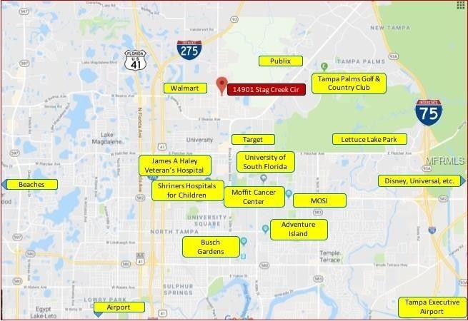 Lutz Florida Map.14901 Stag Creek Cir Lutz Fl 33559 Realtor Com