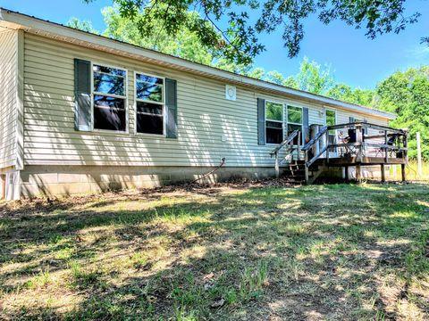 Lake County, MI Real Estate & Homes for Sale - realtor com®
