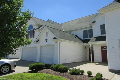 16487 Cottonwood Pl, Middlefield, OH 44062