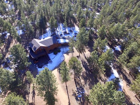 Photo of 91 Four Bits St, Bailey, CO 80421