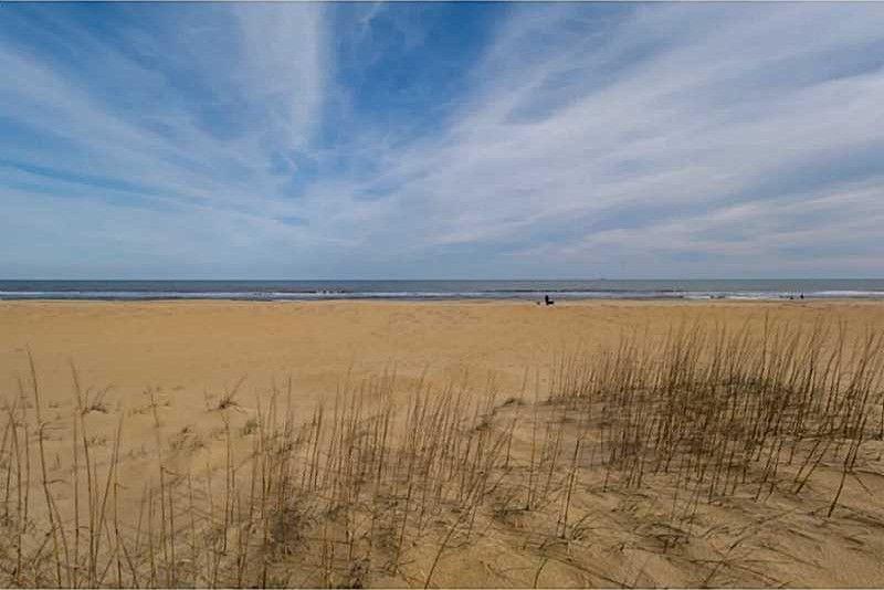 6406 ocean front ave virginia beach va 23451 for 530 terrace ave virginia beach