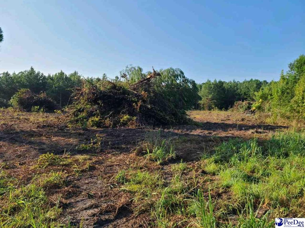 Timmons Rd Timmonsville, SC 29161