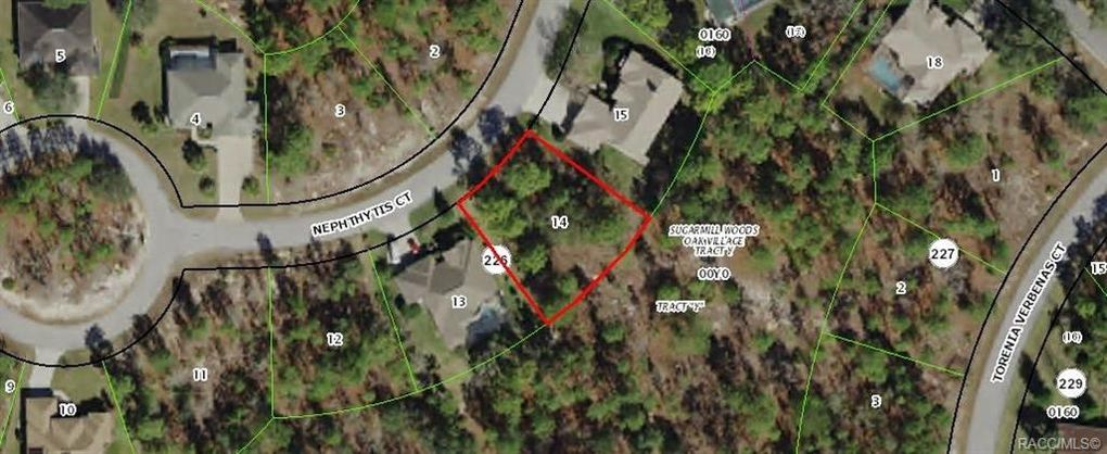 5 Nephthytis Ct Homosassa, FL 34446