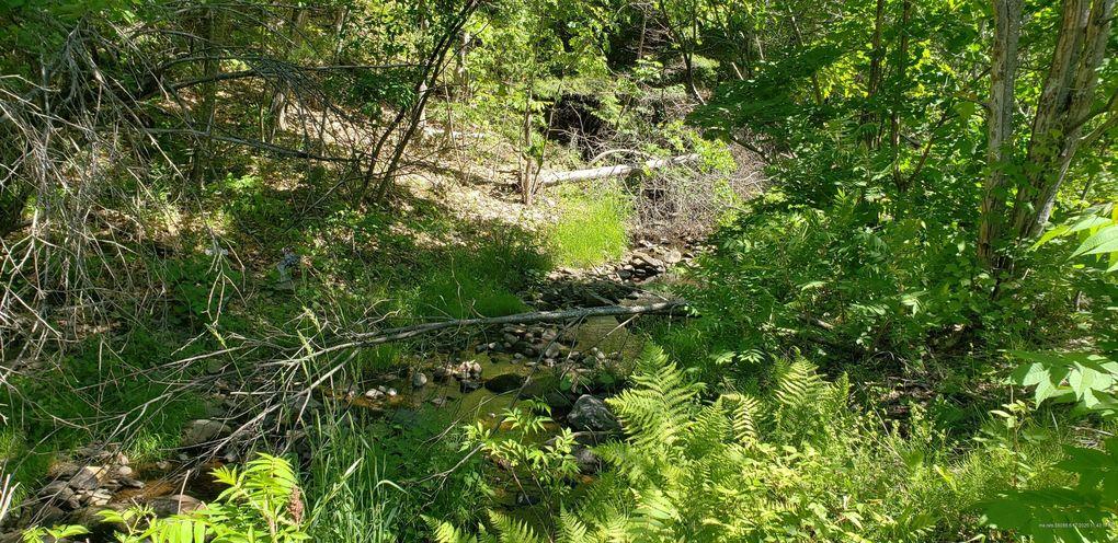 Swetts Pond Rd Orrington, ME 04474