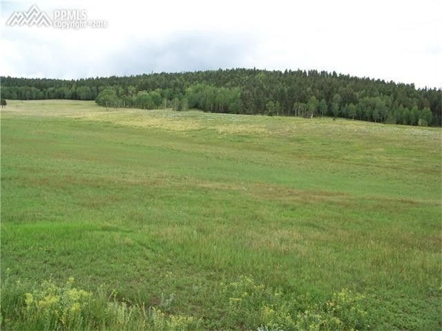 tract 11 county 42 rd divide co 80814 land for sale