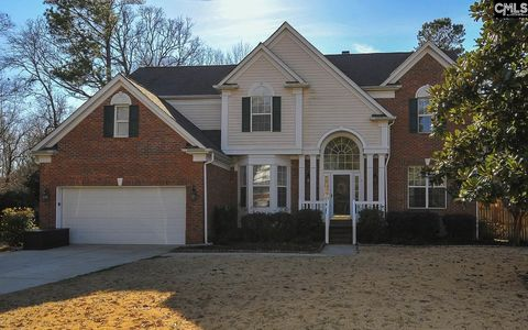 Photo of 114 Hollingshed Creek Blvd, Irmo, SC 29063