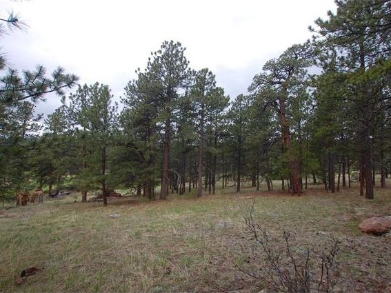 2284 roland dr bailey co 80421 land for sale and real