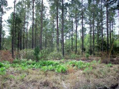 Lane Lot Hummingbird Ludowici GA 31316