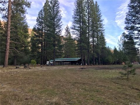 Photo of 251 Back Acres Ct, Taylorsville, CA 95947