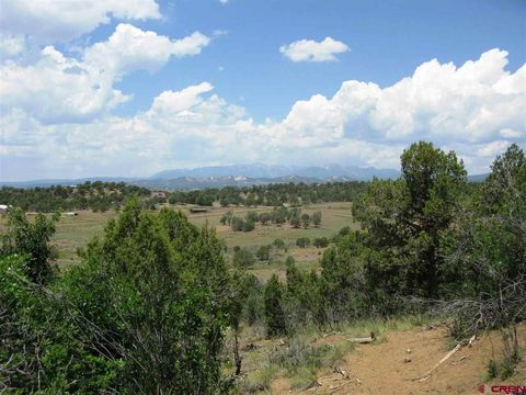 Cody Rd, Durango, CO 81301