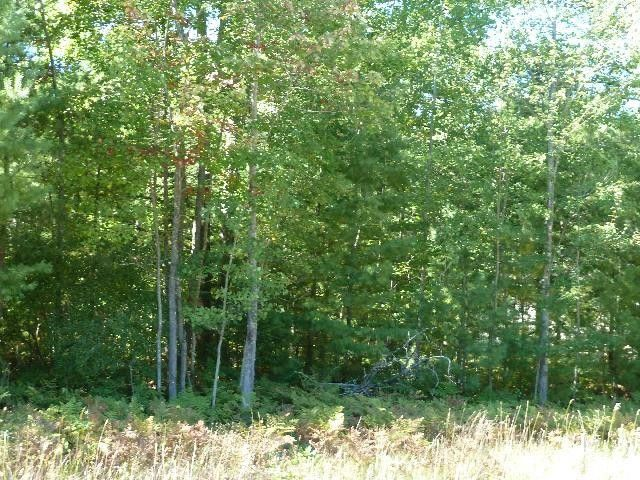 2169 Sommerset Dr Lot 4 Alpena Mi 49707 Land For Sale And Real