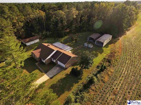 1532 Potato House Rd Darlington SC 29532
