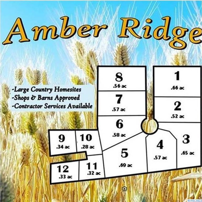 106 Amber Ridge Rd Lot 6 Palouse, WA 99161