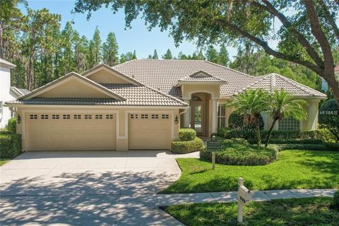Photo of 10241 Garden Alcove Dr, Tampa, FL 33647