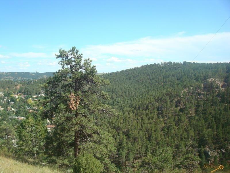 3700 Red Rock Canyon Rd Rapid City Sd 57702 Realtor Com 174