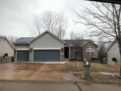Photo of 820 Silver Lake View Dr, Pacific, MO 63069