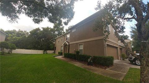 4232 Bismarck Palm Dr, Tampa, FL 33610