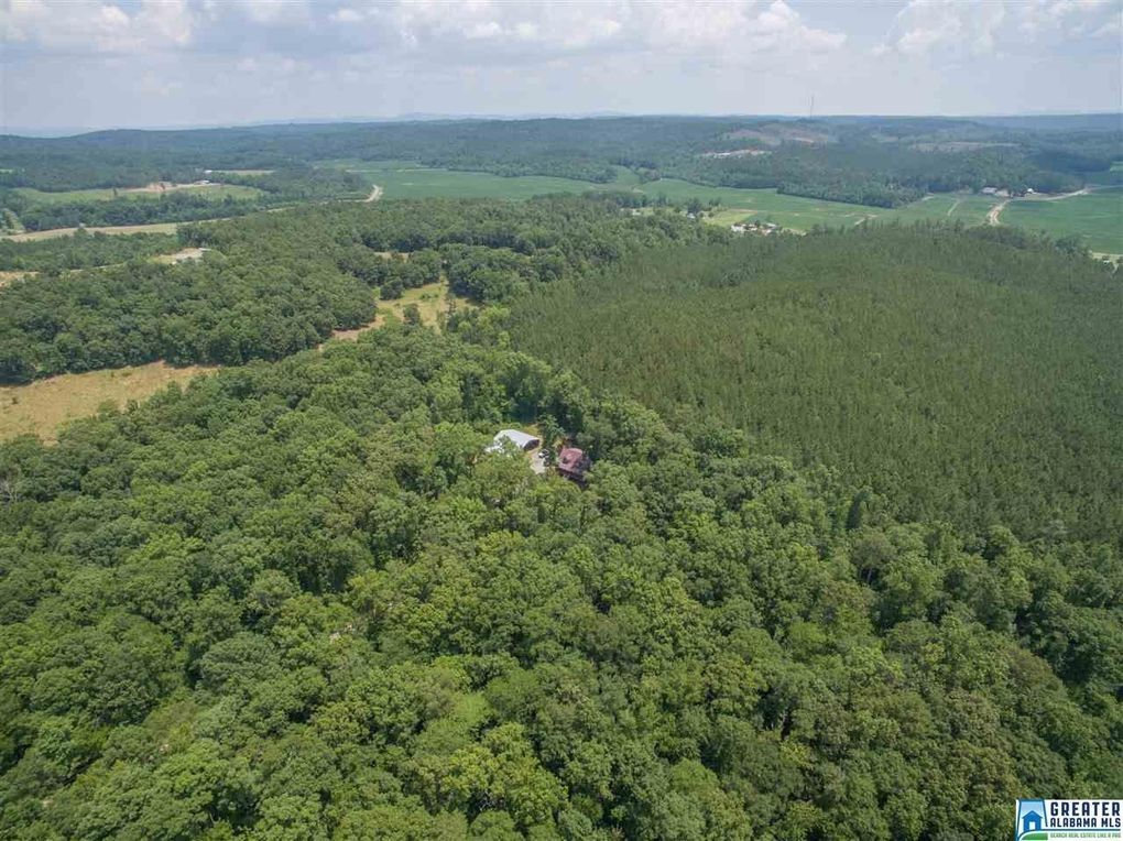 singles in hanceville 306 county road 672, hanceville, al is a 2523 sq ft, 4 bed, 4 bath home listed on trulia for $250,000 in hanceville, alabama.