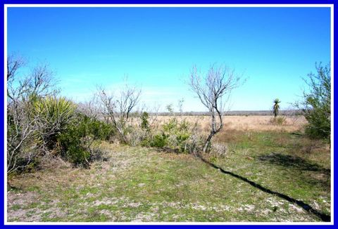 Fm 2049, Three Rivers, TX 78071