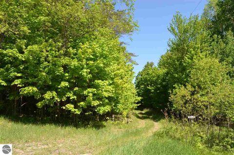 Photo of 10253 Cedar Creek Rd, Fife Lake, MI 49633