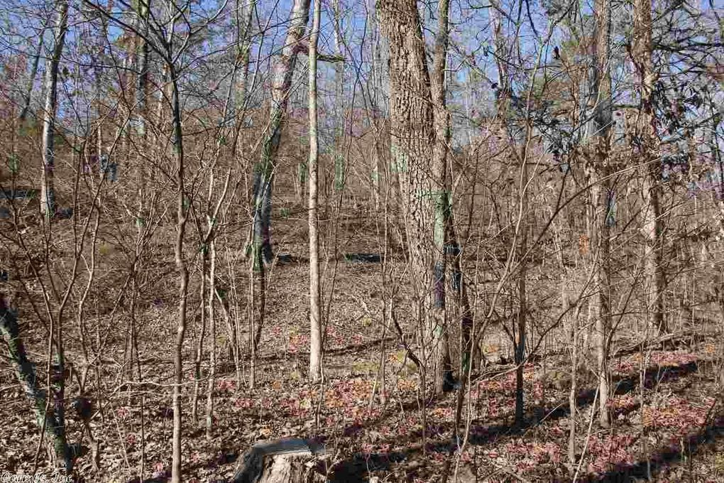 eagle rock rd shirley ar 72153 land for sale and real