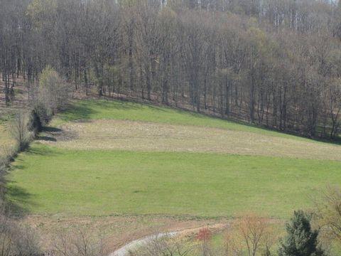 Spring Valley Rd, Marion, VA 24354