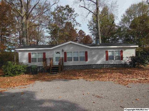 411 Paint Rock Rd, New Hope, AL 35760