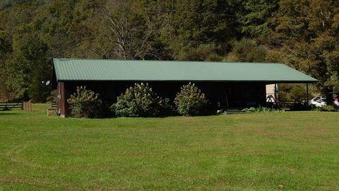 226 Beech Fork Rd, Burnsville, WV 26335